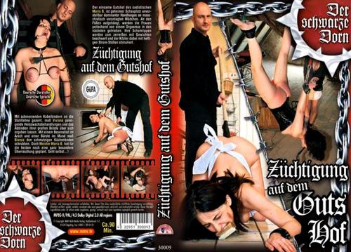 Z-ng.auf_m.jpg