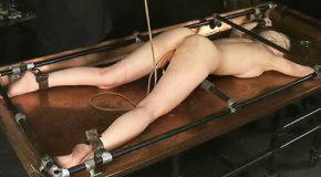 Insex---2002.03.23---12-Hours-II-Live-Feed-Cowgirl-411-2002.07.17_m.jpg