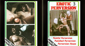 Erotic-Perversion-3_m.jpg